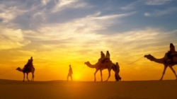 Jaisalmer the Golden City