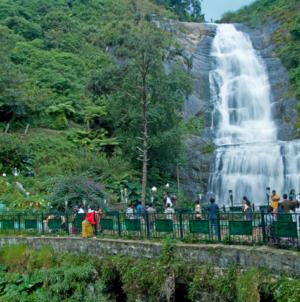 Kodaikanal: The gift of the forest