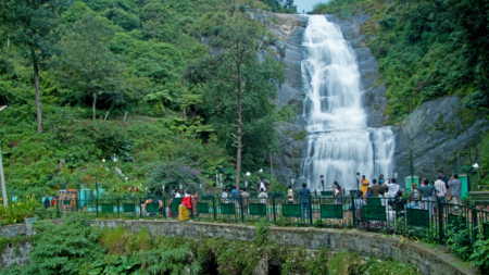 Kodaikanal: The gift of the forest