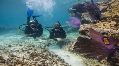 Scuba Diving in Andaman – The diving destination