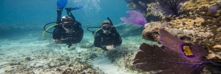 Scuba Diving in Andaman – The diving destination