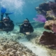Andaman – The diving destination, experience the world inside sea.