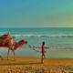 Puri Beach Festival a Mesmerizing Event